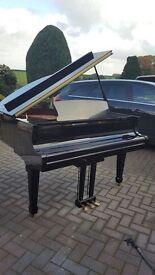 Modern Steinback baby grand 4.6ft|Belfast Pianos