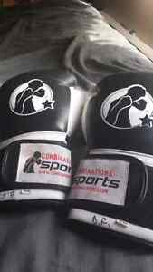 Combination Sports boxing gloves