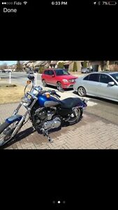 Excellent Condition HD Sportster 1200cc