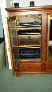 Entertainment stand Kawartha Lakes Peterborough Area image 4