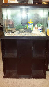 WANTED: Fish,  tanks, plants or accessories
