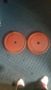 Two 25 lbs Steel weights for sale Asking $ 40