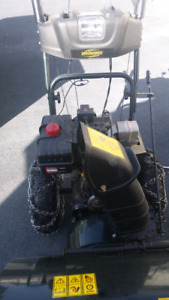 Free pickup /delivery. Snowblower repair