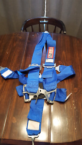 RSJ 5pt harness good condition
