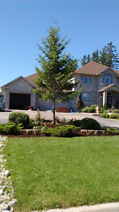 Cheap fall cleanup Kitchener / Waterloo Kitchener Area image 1