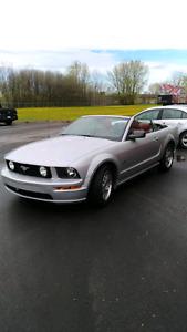 Mustang gt 2005