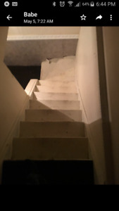 Bachelor Basement Apartment, Brampton ON
