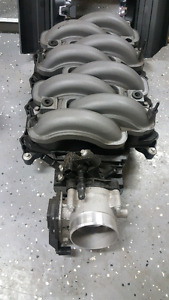 Coyote 5.0 intake