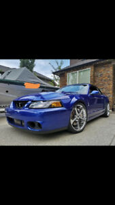 2003 Mustang Cobra Supercharged
