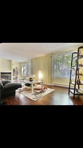Griffintown spacious sunny 4 1/2 condo for rent( garage)