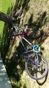 Mint condition 10 Speed bicycle