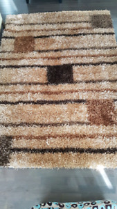 Brown-Multi Shag Carpet