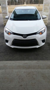 2016 Toyota Corolla LE BckUpCam,Heated Seats,Bluetooth,CHEAPEST!