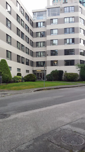 LARGE 1 BEDROOM SUITE WEST OF DENMAN BY PARK