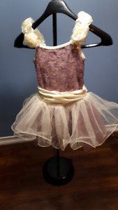 Dance or Recital Costume Dress