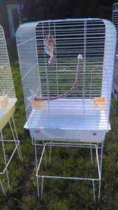 Petite cage et accessoires pour perruches