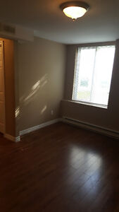 Cozy Two Bedroom Apartment on Greenspond Drive in Cowan Heights St. John's Newfoundland image 7
