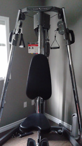 ST200 Vision Fitness Functional Trainer/gym