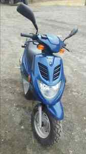 2006 Eton Beamer II scooter