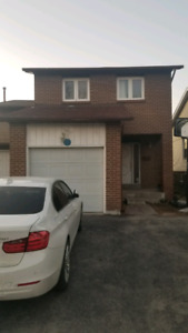 3+1 BDR home for rent -Scarborough