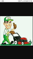 Grass Cutting Service's