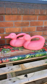 Duck Shaped Watering Cans £5 for two