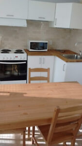 Large furnished bachelor apartment in Crystal Beach