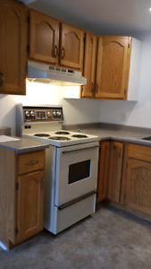 Wanted -responsible tenant for our bright and roomy  apartment.