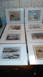 Beautiful local water color pics
