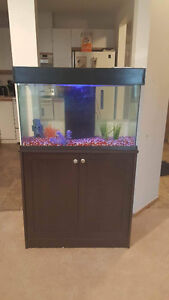 25 Gallon fish tank and stand with all accessories