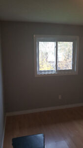 1 Room for rent - Available Mid Nov or Dec 1st (No parking) Kitchener / Waterloo Kitchener Area image 8