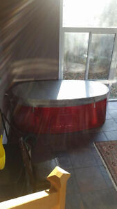 Spa Berry for sale Stratford Kitchener Area image 4