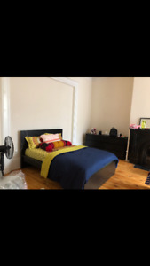 1 bedroom sublet May - August