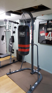 Punching bag w/ stand