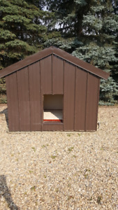 Dog House for large dogs