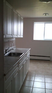 2 bedroom apartment, 20 minutes north of London $675+hydro London Ontario image 1