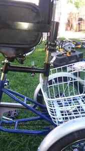 12 inch  genisis youth or adult  trike  Sarnia Sarnia Area image 6