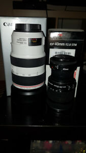Canon 70-300mm F4 - 5.6 L IS USM
