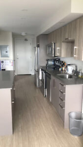 Lease Take Over needed NOW for July 1 - LRG 1 BDRM in SouthEnd