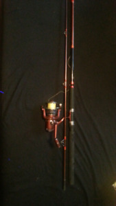 8' Striper rod and reel