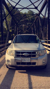 (CERTIFIED AND SAFETIED) 2009 Ford Escape Limited SUV, Crossove