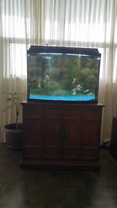 $250 aquarium with stand and all!! Ready asap please email!!