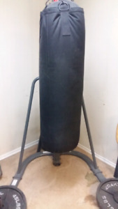 Kickboxing/boxing bag and stand