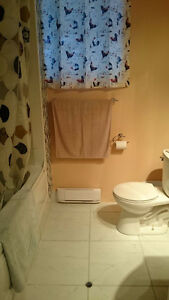Furnished Room with Bathroom - EVERYTHING Included St. John's Newfoundland image 4