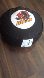 Belleville bulls, The game puck pillow.  Great collector!!!