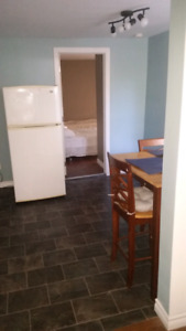 1 bedroom fully furnished apartment in downtown Sydney