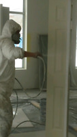 Proffessional Painters available