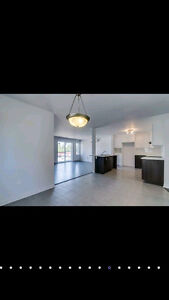 Looking for roommate for dec 1st Gatineau Ottawa / Gatineau Area image 5