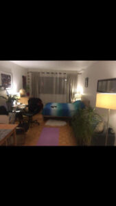 Appartement Studio meuble Tout Inclus Rosemont / Masson