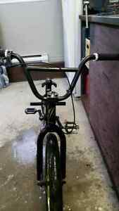 BMX verbe ion competition